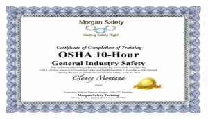 Osha Training Morgan Safety Seminars